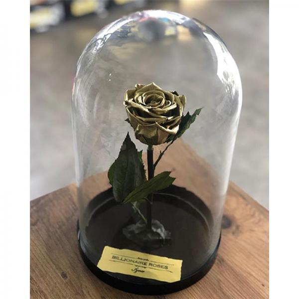 Cam Fanusta Solmayan Gold Gül Billionaire Roses